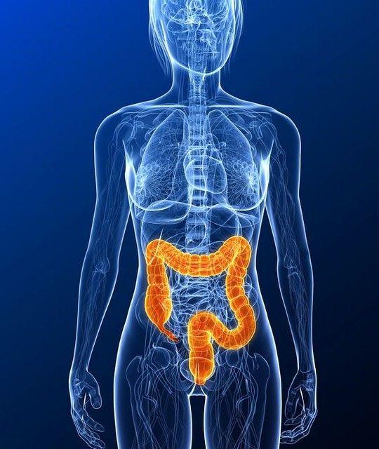 геморрой кишечника симптомы